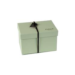 台灣本產水果乾包裝盒(空盒)